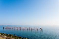 Shellfish farming from Po river lagoon, Italy. Scardovari beach. Italian rural landscape Royalty Free Stock Photography