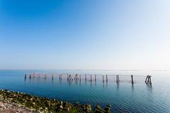 Shellfish farming from Po river lagoon, Italy. Scardovari beach. Italian rural landscape Royalty Free Stock Photos