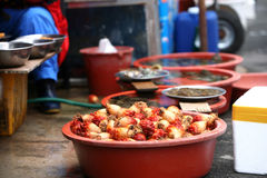 Shellfish.Fish market in South Korea Royalty Free Stock Photography