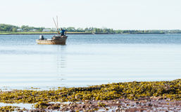 Shellfish Fishing Royalty Free Stock Images