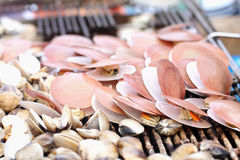 Shellfish grilled stock images