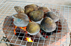 Shellfish grilling Stock Photo