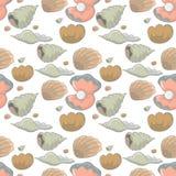 Shellfish royalty free illustration