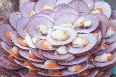 Shellfish meal Stock Photos