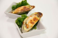 Shellfish mussels Baked  with cheese in shells served. Seafood Shellfish mussels Baked  with cheese in shells served Stock Images