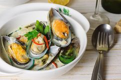 Shellfish mussels in cream sauce with white wine and chili pepper. Royalty Free Stock Photos