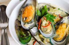 Shellfish mussels in cream sauce with white wine and chili pepper. Royalty Free Stock Photo