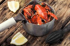 Shellfish in the pan Stock Photography