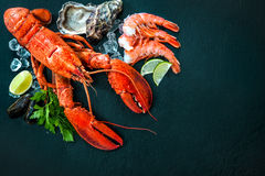 Shellfish plate of crustacean seafood. With fresh lobster, mussels, shrimps, oysters as an ocean gourmet dinner background royalty free stock photo