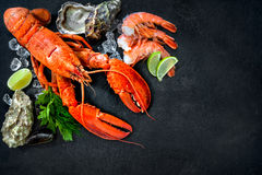 Shellfish plate of crustacean seafood. With fresh lobster, mussels, shrimps, oysters as an ocean gourmet dinner background royalty free stock image