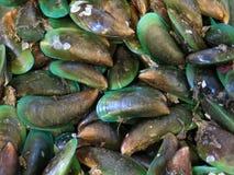 Shellfish przy owoce morza rynkiem Obrazy Royalty Free