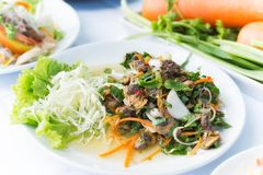 Shellfish with herb spicy salad food thai style Royalty Free Stock Photography