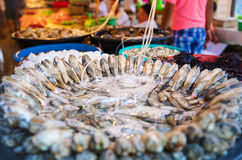 Shellfish for sale at  market Royalty Free Stock Photos