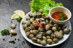 Shellfish Seafood plate cockles fresh raw ocean gourmet dinner with herbs and spices. On dark background - blood cockle peeled with spicy sauce royalty free stock photo