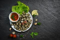 Shellfish Seafood plate cockles fresh raw ocean gourmet dinner with herbs and spices. On dark background - blood cockle peeled with spicy sauce royalty free stock photos