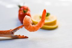 Shellfish seafood Shrimp on boiled crab claws / Shrimps prawns ocean gourmet dinner. And tomato lemon on white table background royalty free stock image