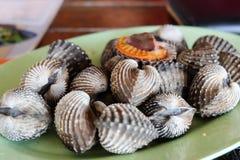 Shellfish Royalty Free Stock Photography