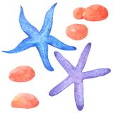 Shellfish and Starfish watercolor collection on white background , Hand drawn for Kids, Greeting Card , Cases design,. Postcards, Product, Notebook and more vector illustration