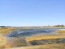 Shellfish teren obok isla Cristina plaży, Costa De Los angeles Luz, Huelva, Hiszpania Cantil plaża w tle obraz royalty free