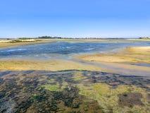 Shellfish teren obok isla Cristina plaży, Costa De Los angeles Luz, Huelva, Hiszpania Cantil plaża w tle obrazy stock