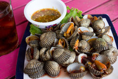 Shellfish thai food Stock Image