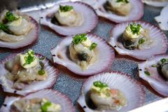 Shellfish, which is seafood on a white plate stock photos