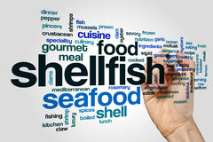 Shellfish word cloud concept Royalty Free Stock Image