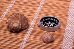 Shellfishes and compass Stock Photography