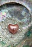 shellheart Zdjęcia Royalty Free