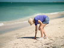 Shelling on Captiva and Sanibel Islands Florida Royalty Free Stock Photos