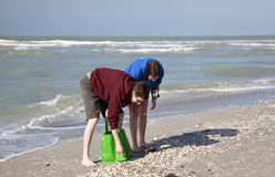 Shelling on Sanibel Island, Florida. Older brother and sister looking for shells early in the morning at beach on Sanibel Island, Florida Royalty Free Stock Photography