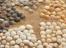 Shells. Composition of starfish and sea shells on the beach stock images