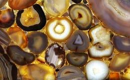 shells Lizenzfreie Stockfotos