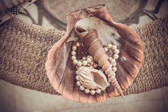 Shells and accessories, sepia colors Stock Photo
