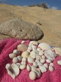 Shells auf einem Tuch Lizenzfreie Stockfotos