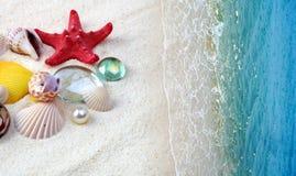 Shells auf Sandstrand stockfoto
