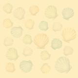 Shells background (vector) Stock Image