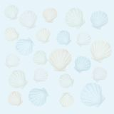 Shells background (vector) Royalty Free Stock Photography