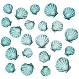 Shells background (vector) Stock Photography