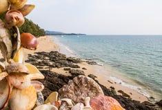 Shells beach Royalty Free Stock Photo
