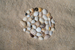 Shells on the beach, vacation memories Royalty Free Stock Images