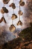 Shells with beautiful coastline background - Lefkada island in Greece. Digital painting vector illustration