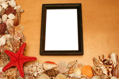 Shells and a blank frame Royalty Free Stock Photography