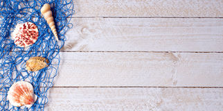 Shells with blue fishing net on wooden background Royalty Free Stock Photos