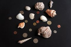 Shells and coins Royalty Free Stock Photography