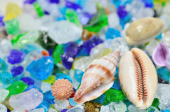 Shells and colored glass. Royalty Free Stock Image