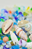 Shells and colored glass. Royalty Free Stock Photo