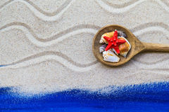 Shells colored spoon beach sand Royalty Free Stock Image