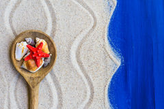 Shells colored spoon beach sand Royalty Free Stock Photos
