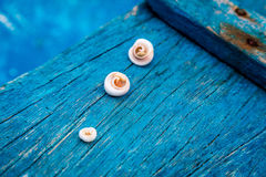 Shells on a deck of an old wooden boat, Boracay Island, Philippines Royalty Free Stock Photos